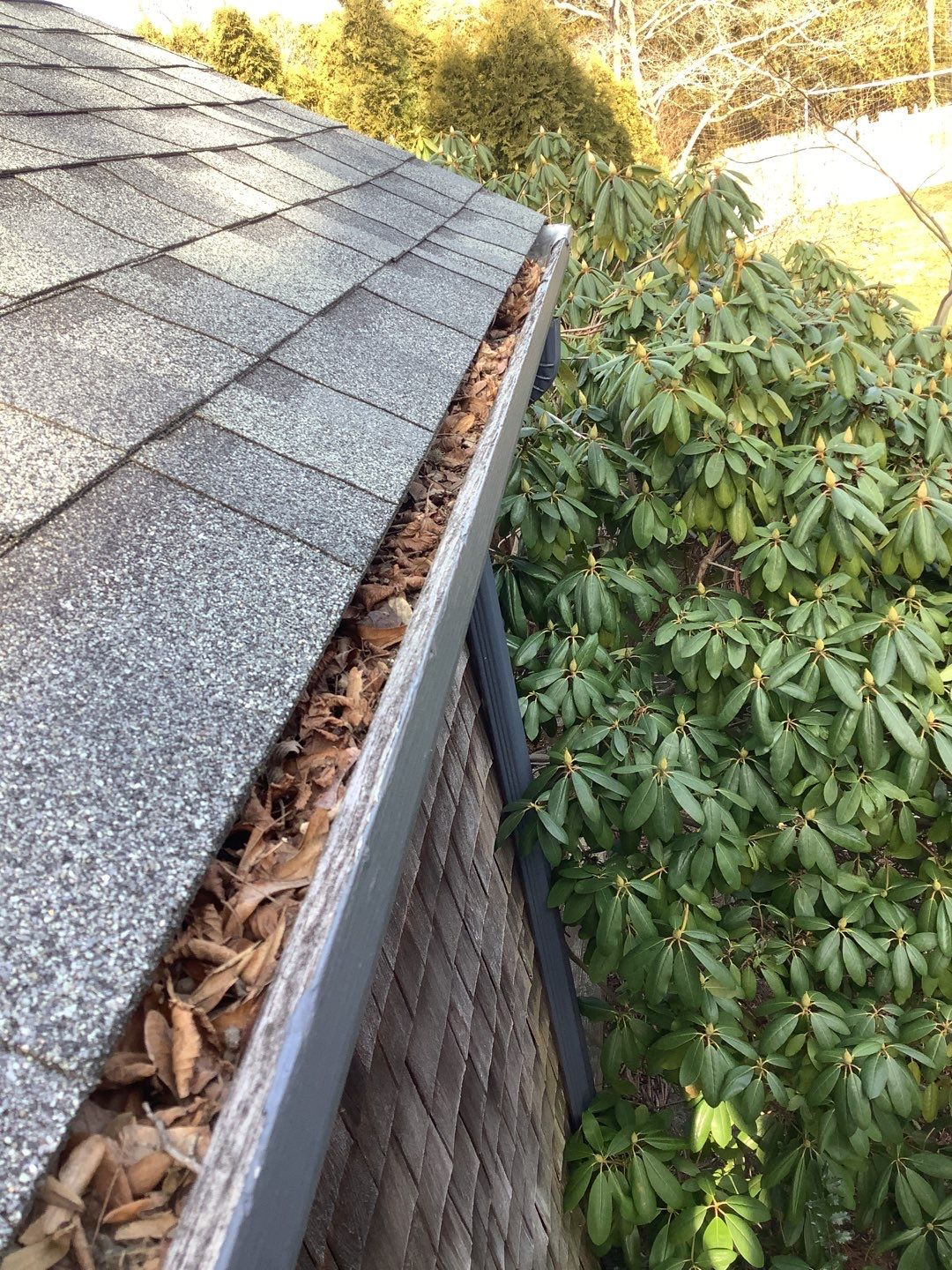A gutter that needs to be cleaned per the spring home maintenance checklist